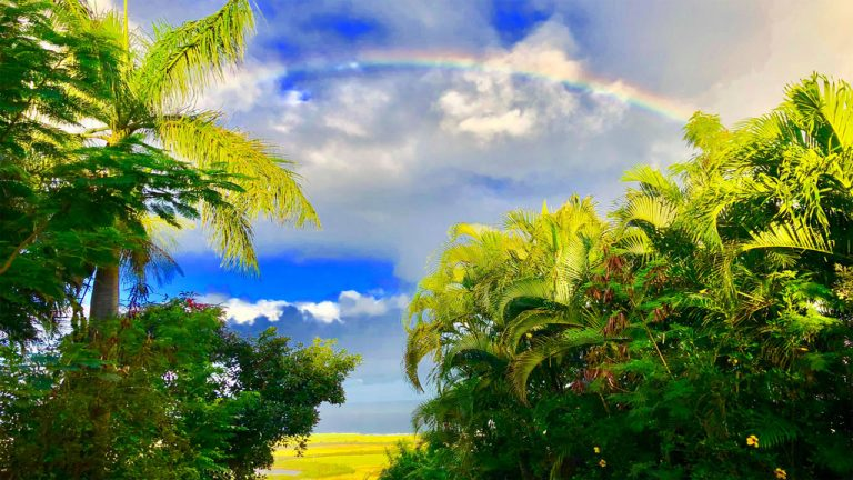 自宅から見渡すホキパビーチにかかる美しい虹Photo byJunko Tsubota